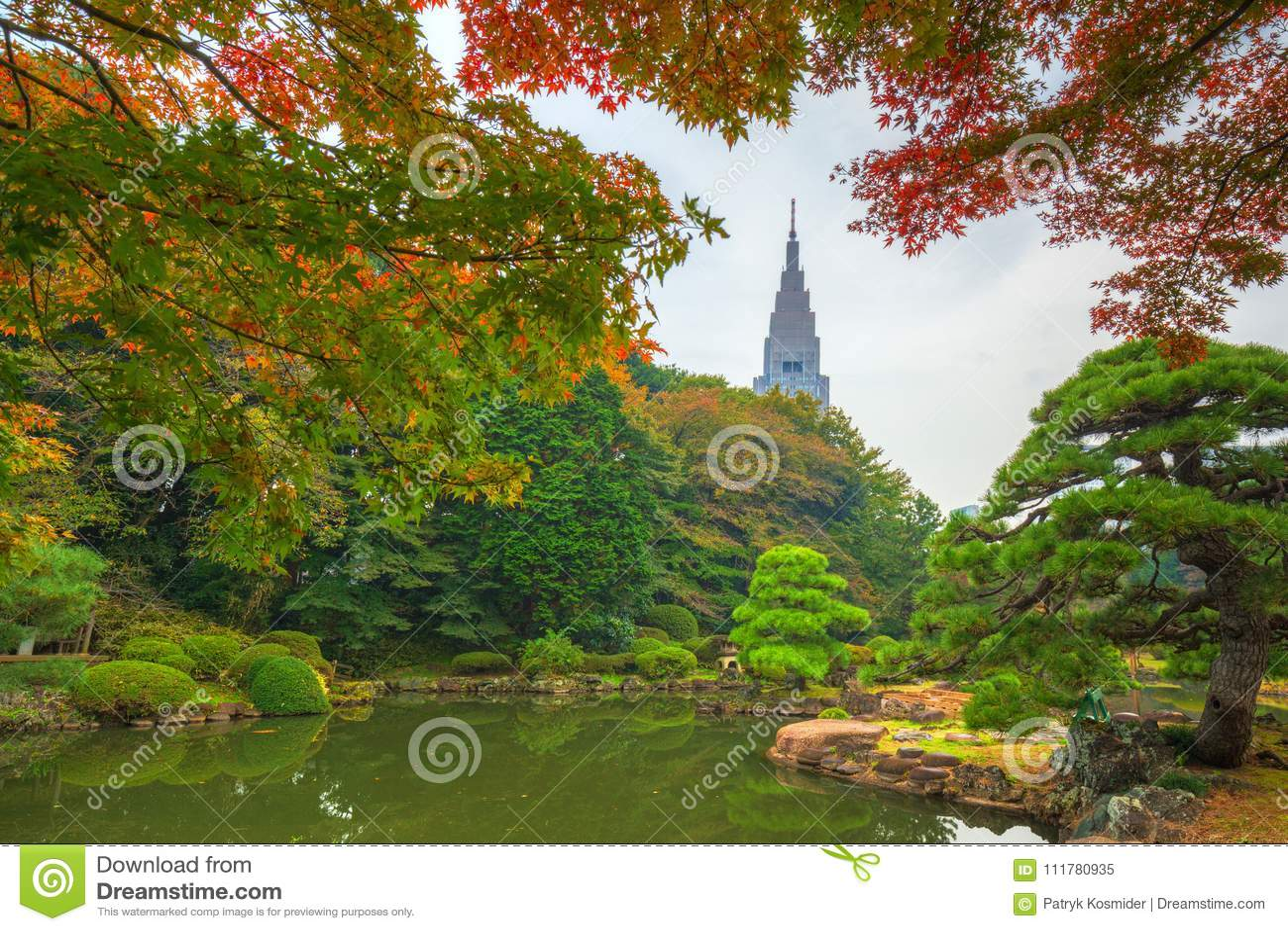 Autumn in the Shinjuku Park, Tokyo