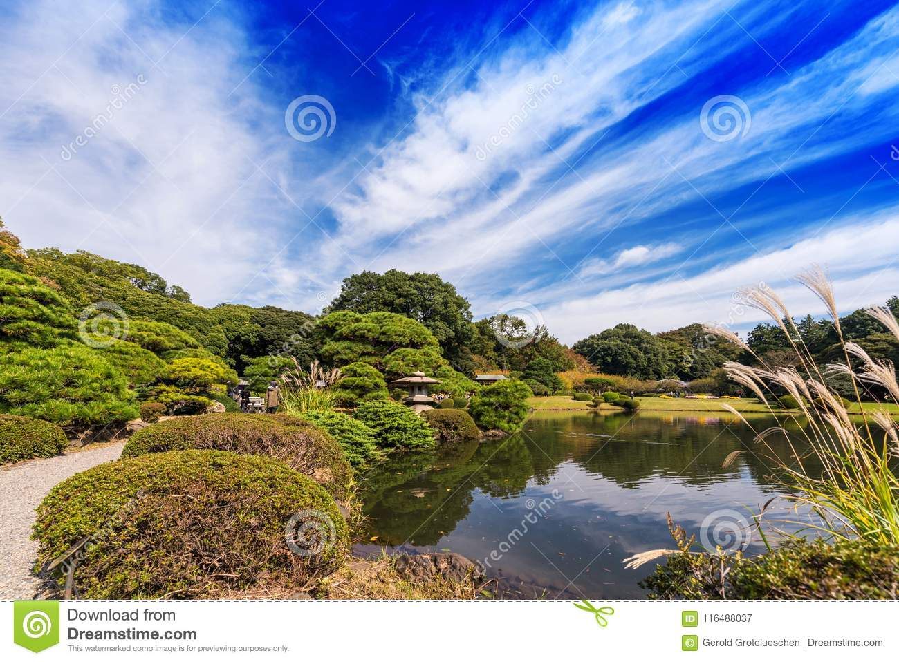 Autumn in the Shinjuku park, Tokyo, Japan. Copy space for text.