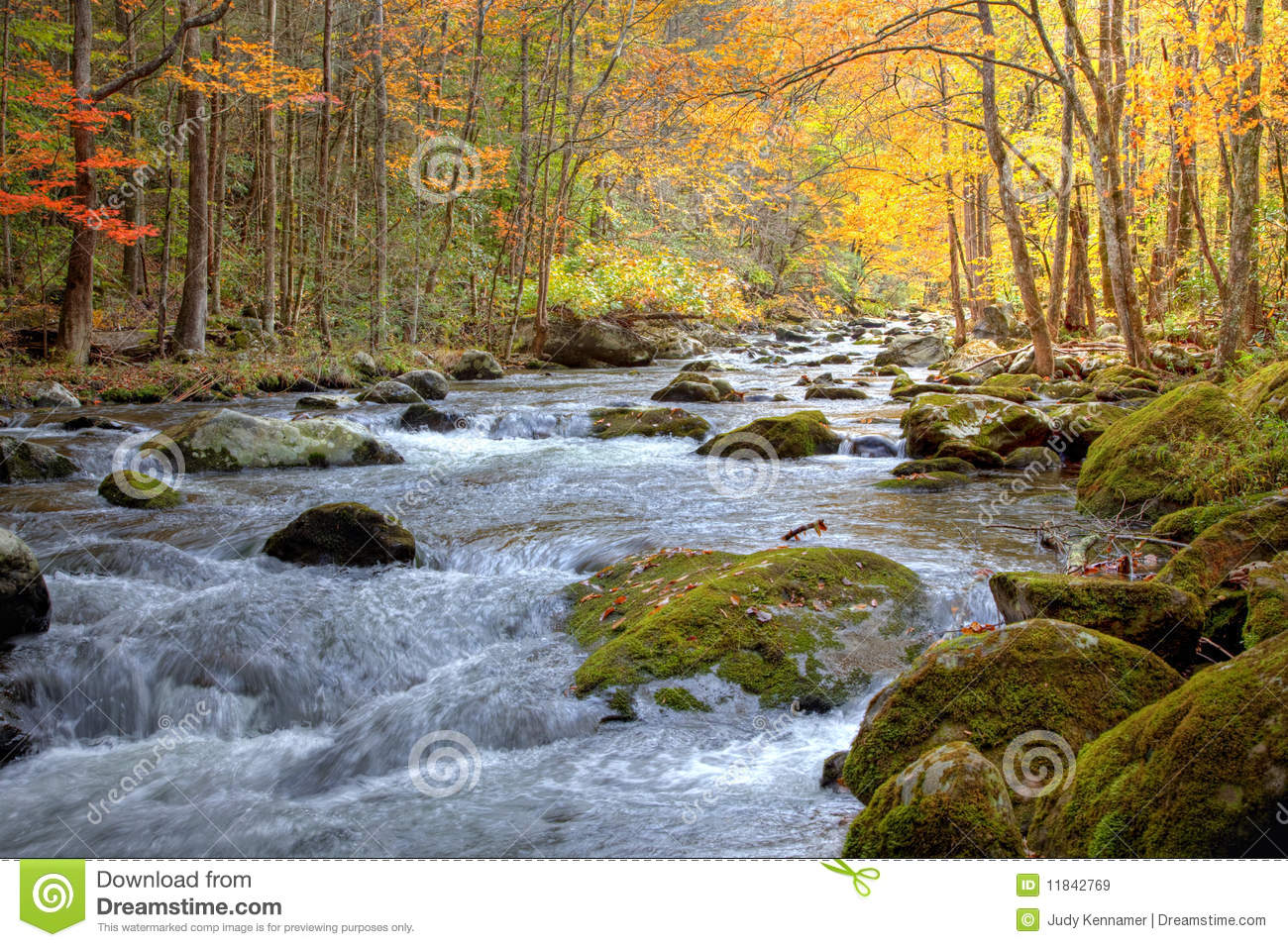 Autumn Smoky Mountain stream