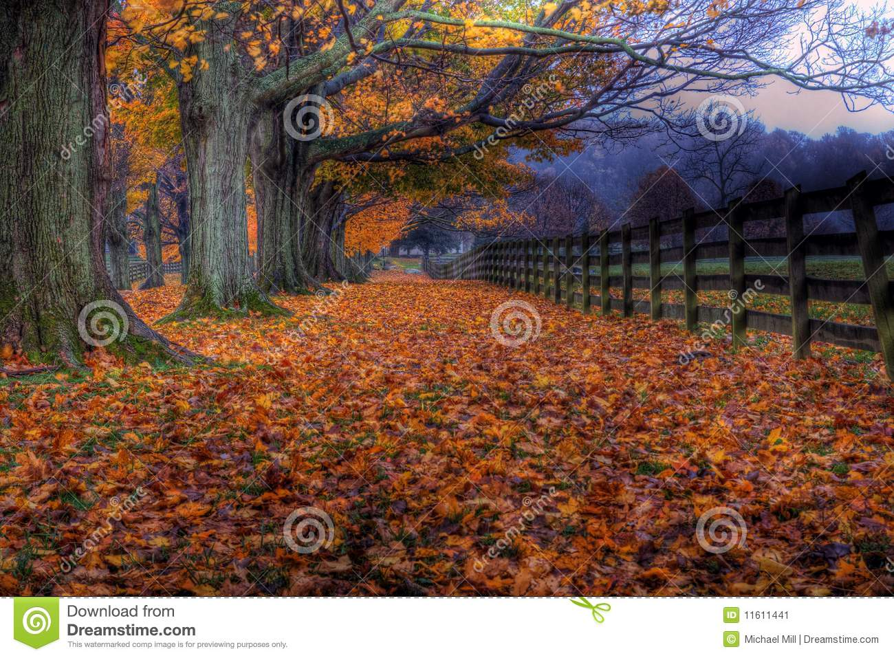 Download Autumn At Springton Manor Farm Stock Image - Image of pennsylvania, color: 11611441