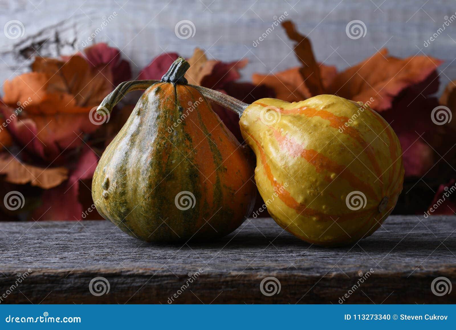 Autumn Still Life mit zwei Kürbissen und Fallblättern