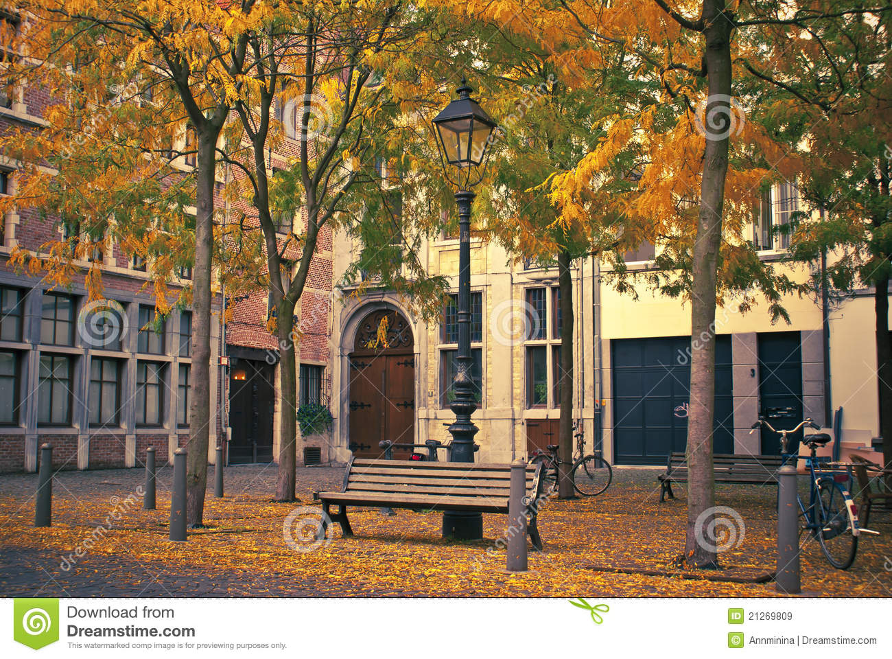 autumn street royalty free stock images