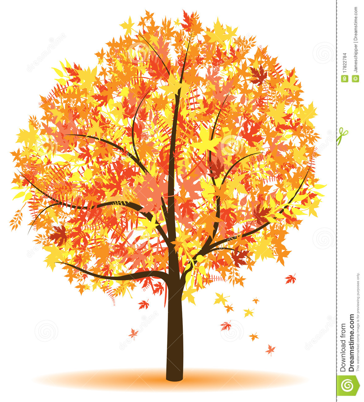 Displaying 12> Images For - Autumn Tree...