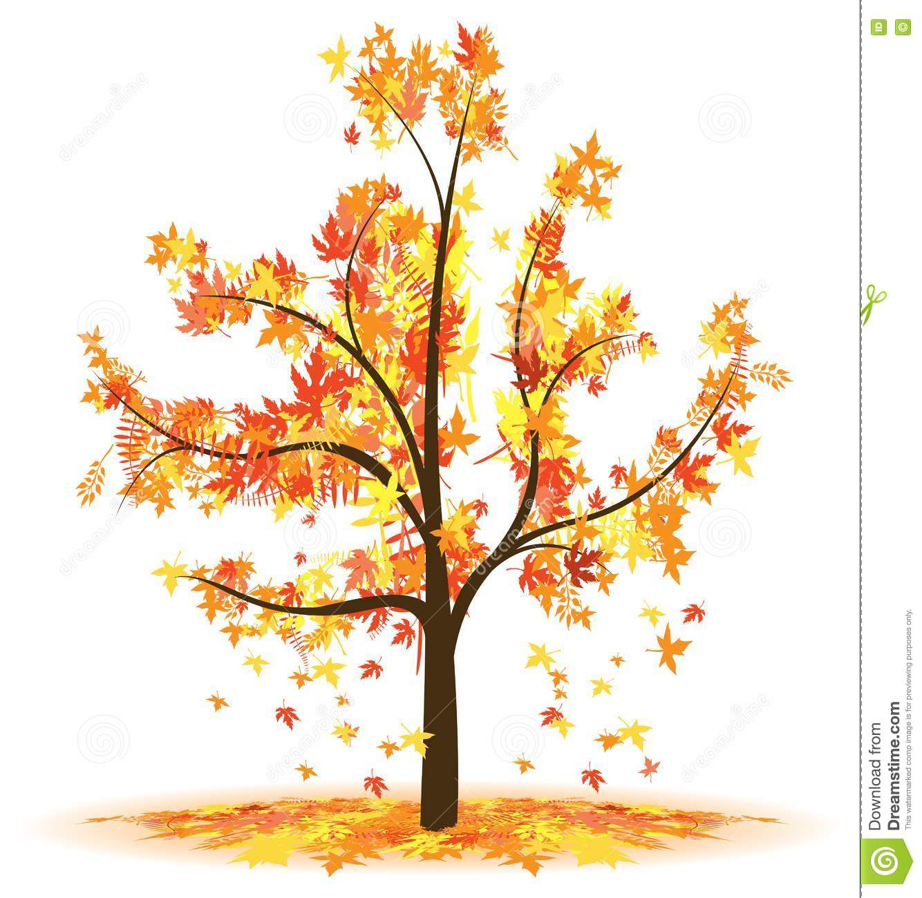 Autumn Tree Royalty Free Stock Photography - Image: 17822837