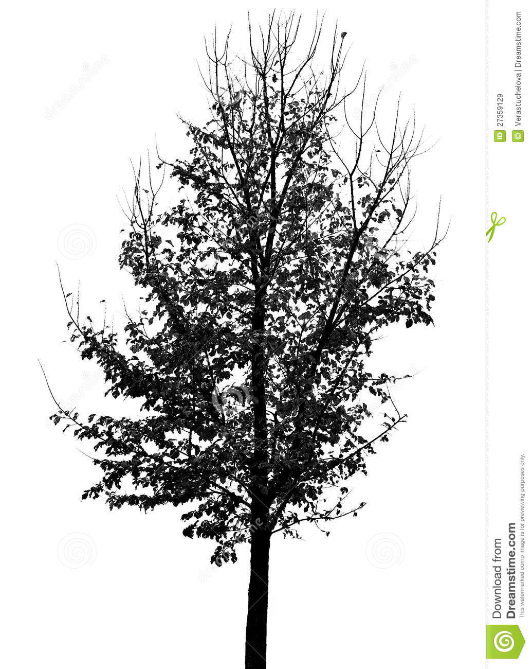 Tree Silhouette With Autumn