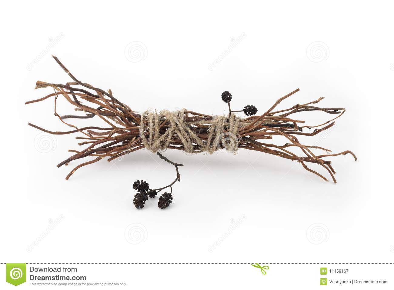 Twig Decor dry branch stock photo - image: 12368970