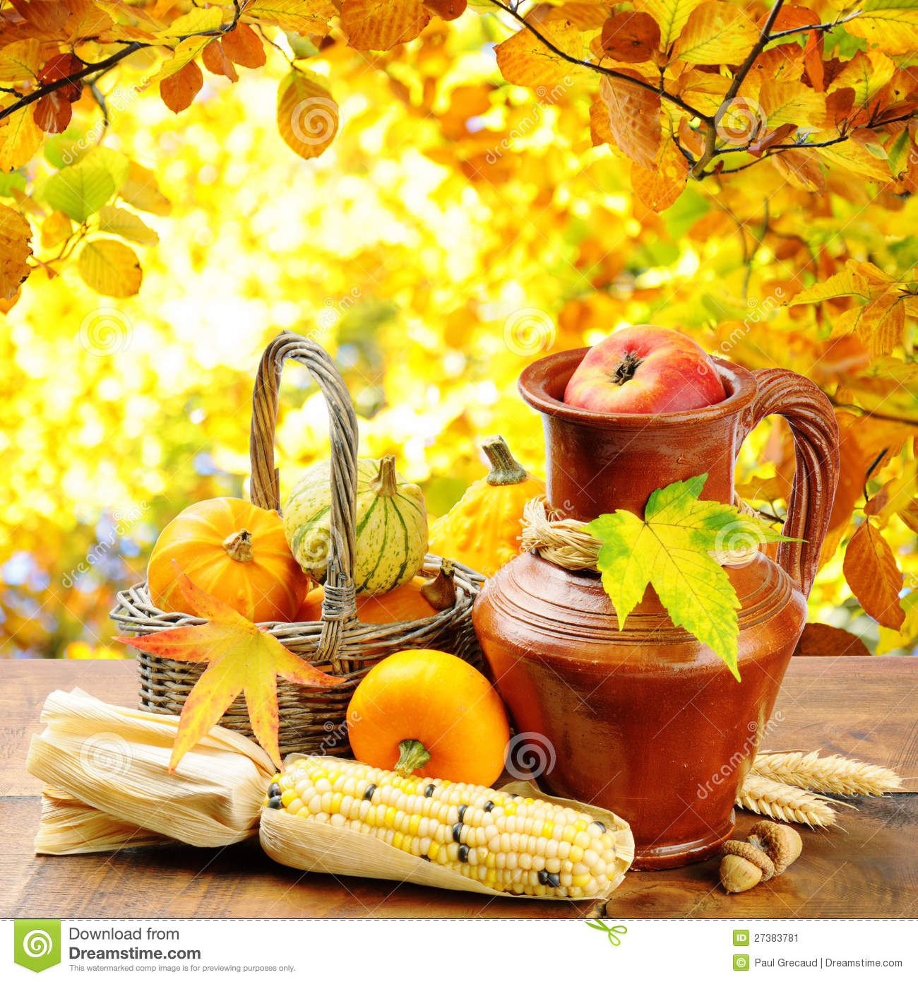 autumn-veg​etables-go​lden-fores​t-backgrou​nd-2738378​1