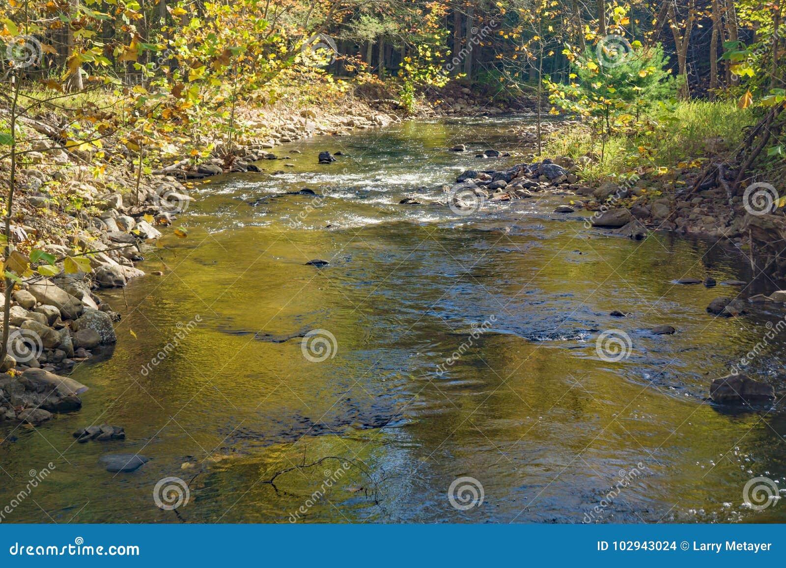 Autumn View av Wilson Creek
