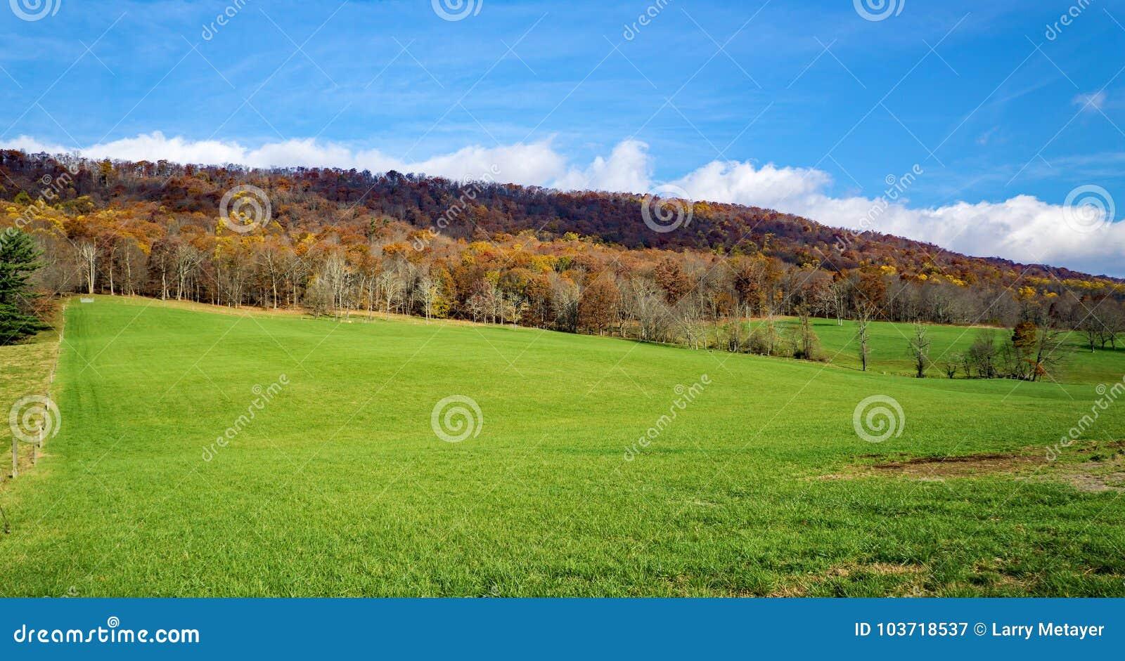 Autumn View da montanha da angra de Johns