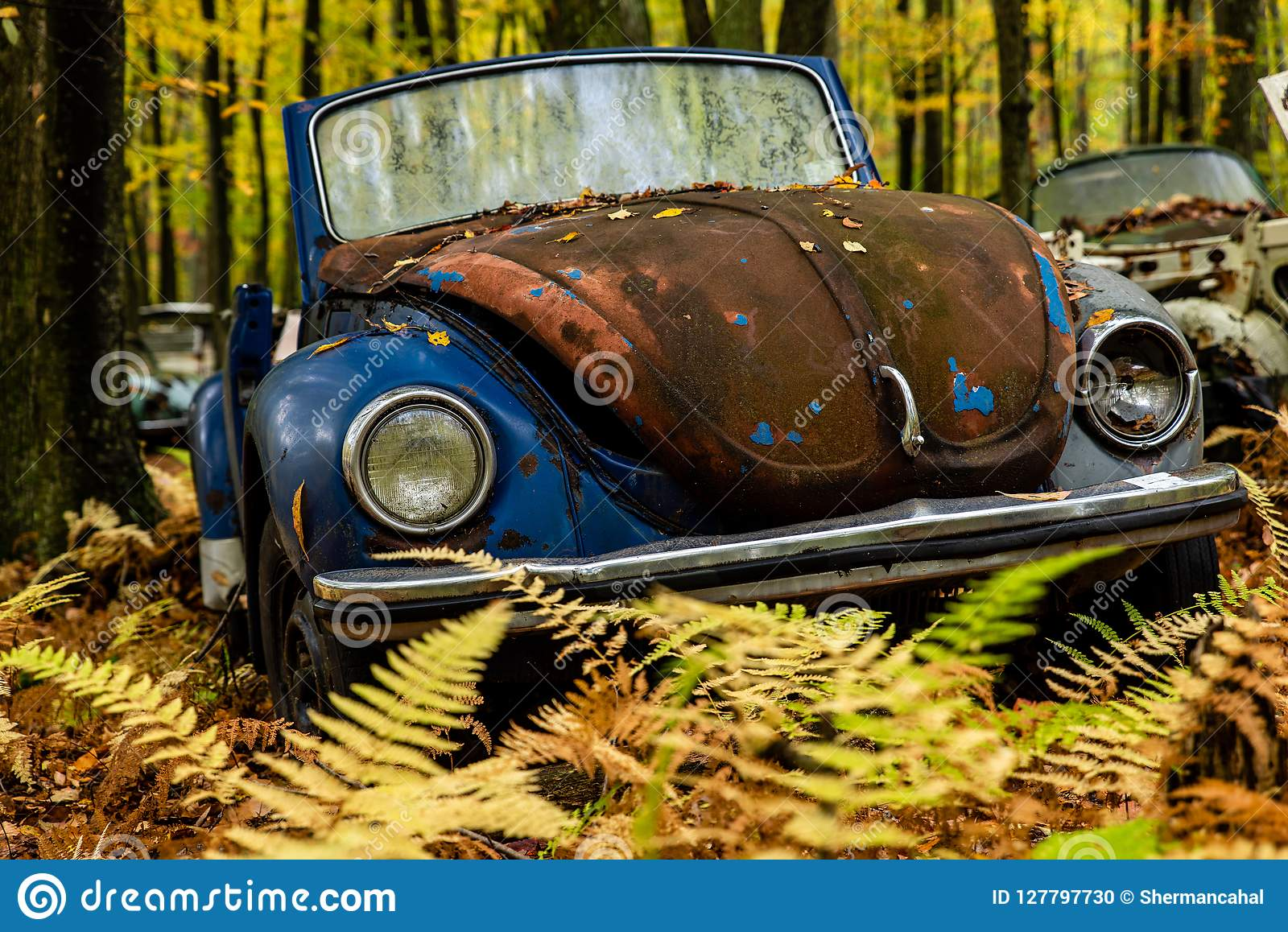 Vintage VW Beetle - Volkswagen Type I - Pennsylvania