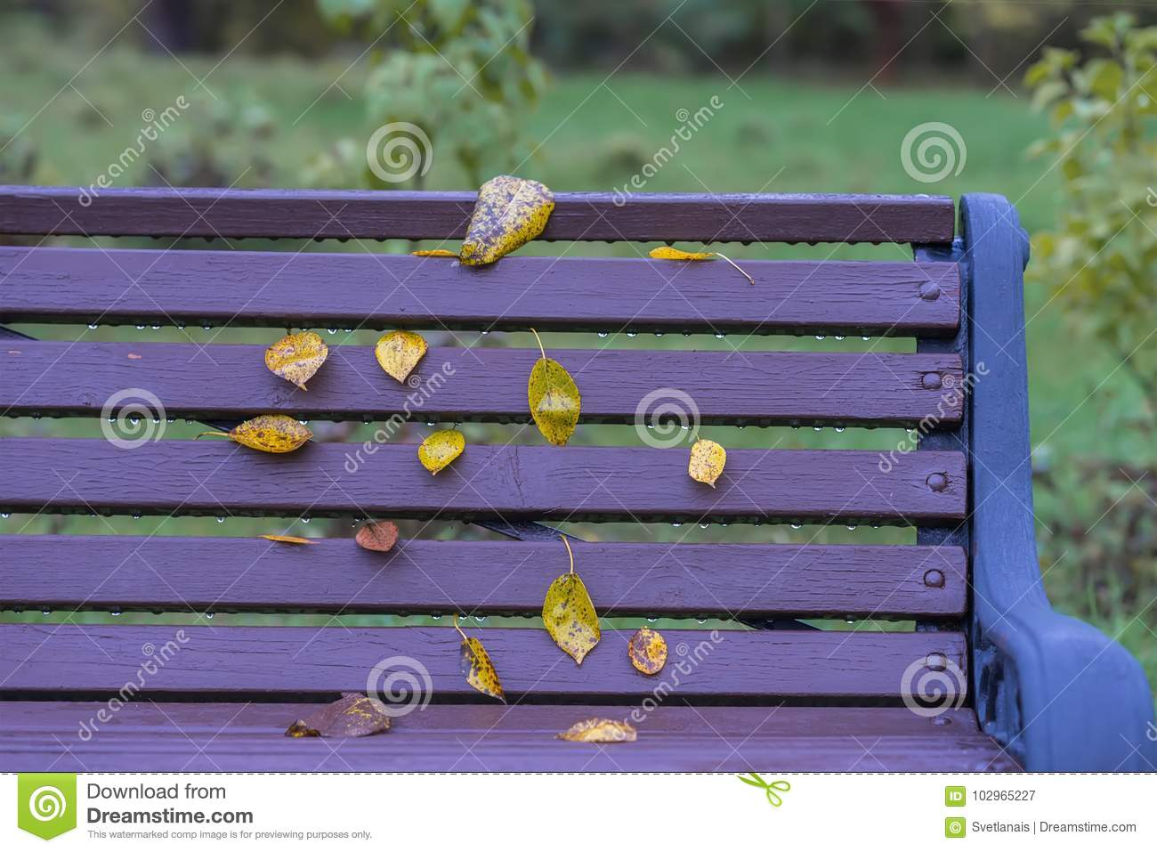 by furniture purple benches bench safavieh front
