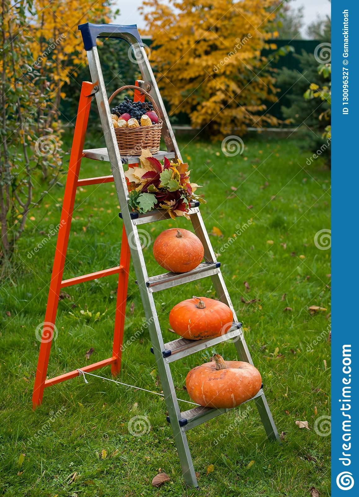 Autumn ladder of fruits of a harvest