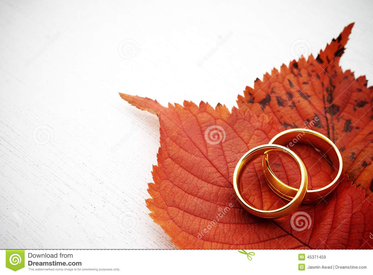 Autumn Wedding Invite Stock Photo - Image: 45371459 Leaves Clipart