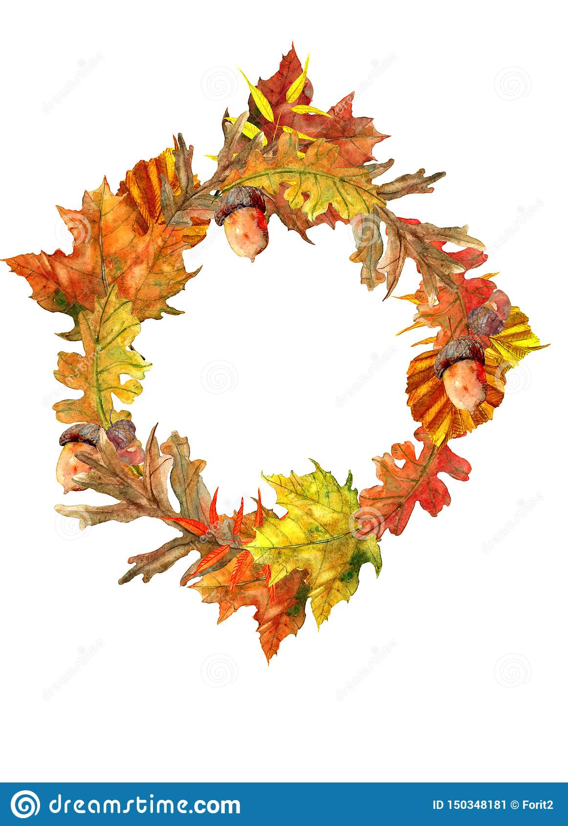 autumn wreath with beautiful leaves