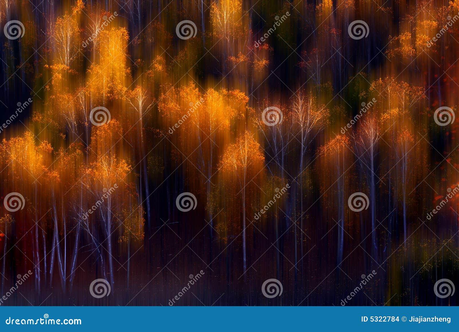 Download Autunno fotografia stock. Immagine di caduta, tiraggio - 5322784