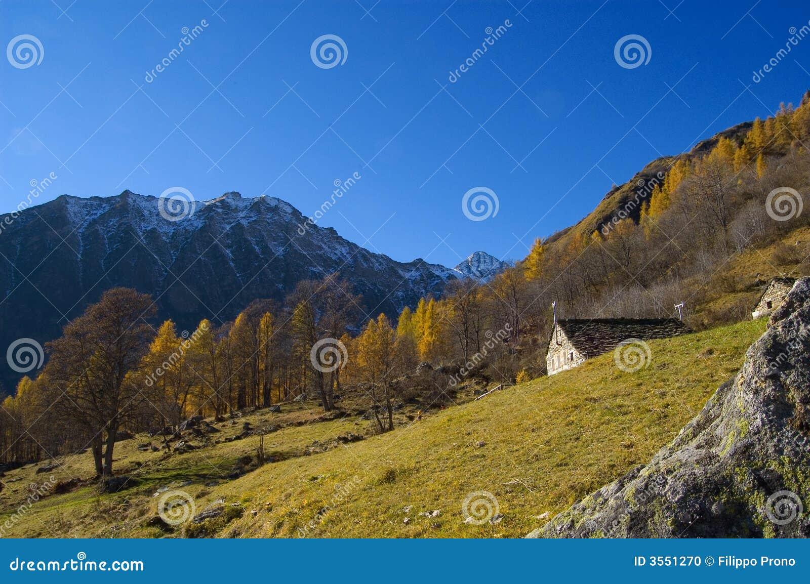 Autunno ripido del fianco di una montagna