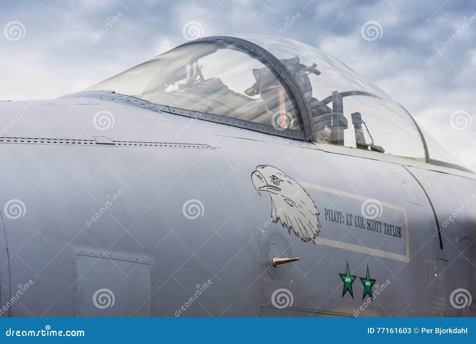 Auvent de grève Eagle de l Armée de l Air d USA F/A-15