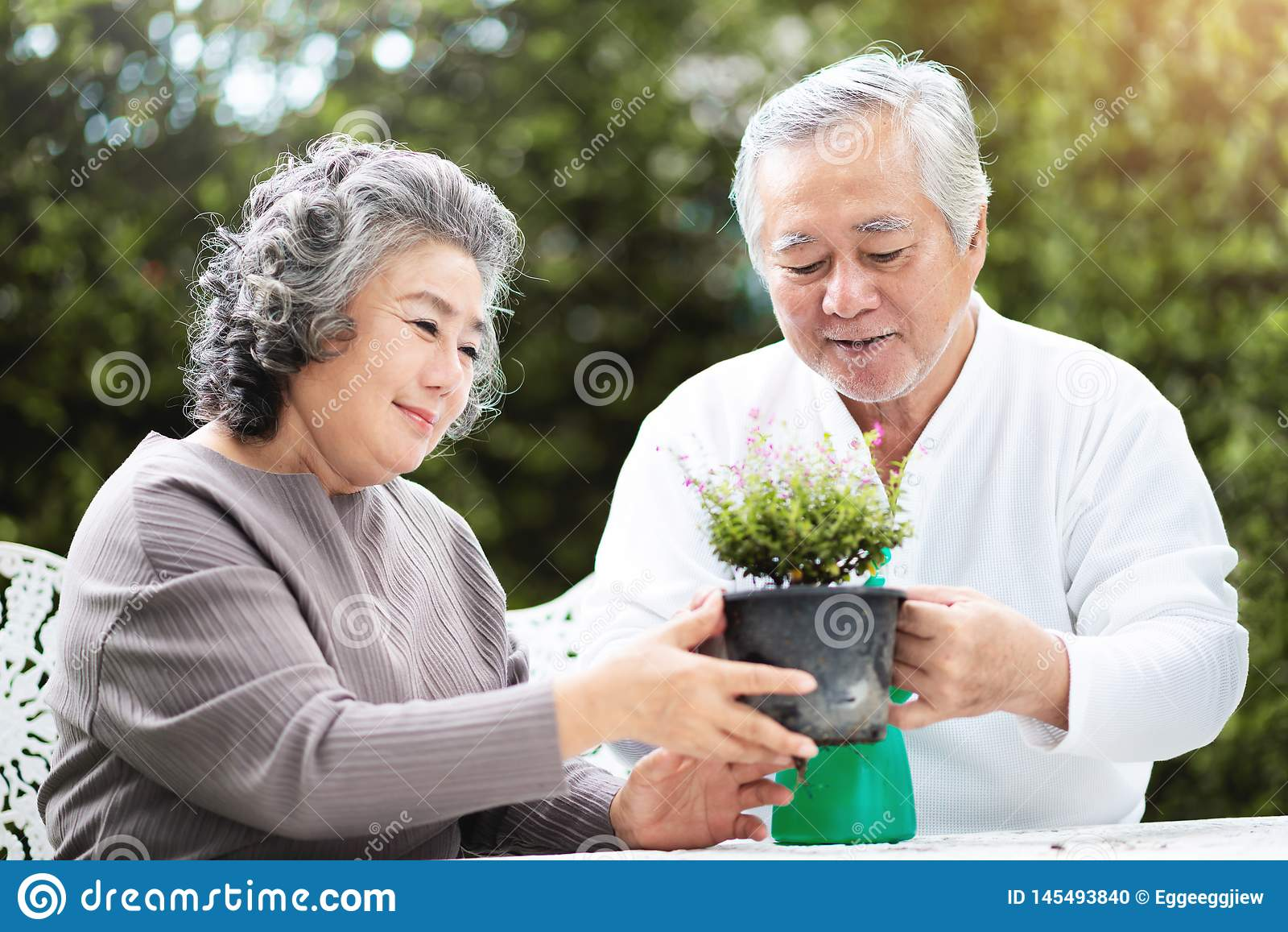 A avó ajuda o avô a importar-se com plantas