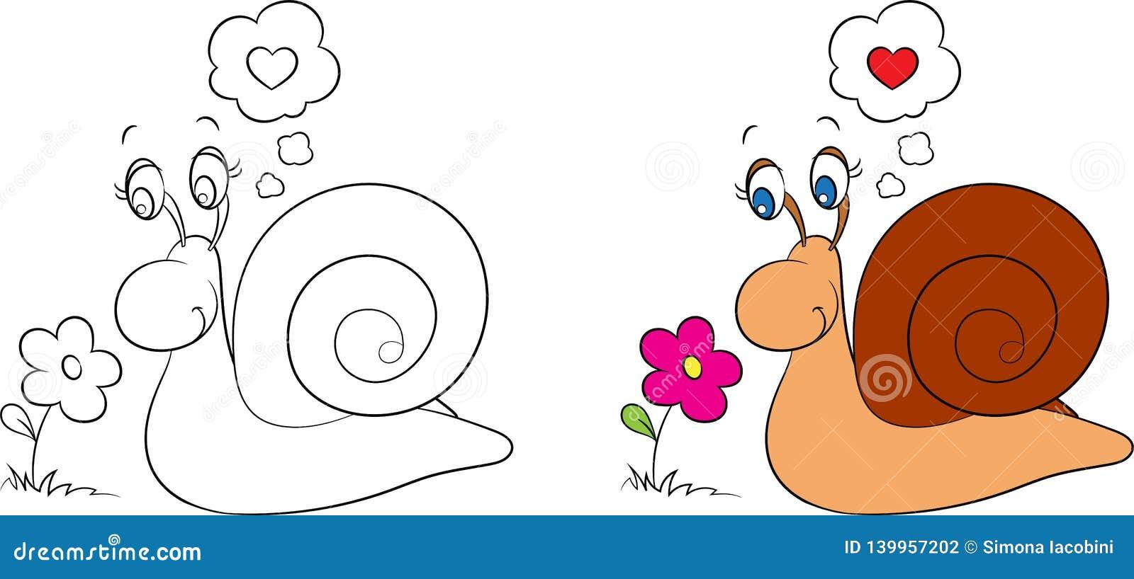 Avant Et Apres Le Dessin De Kawaii D Un Petit Escargot Regardant Une