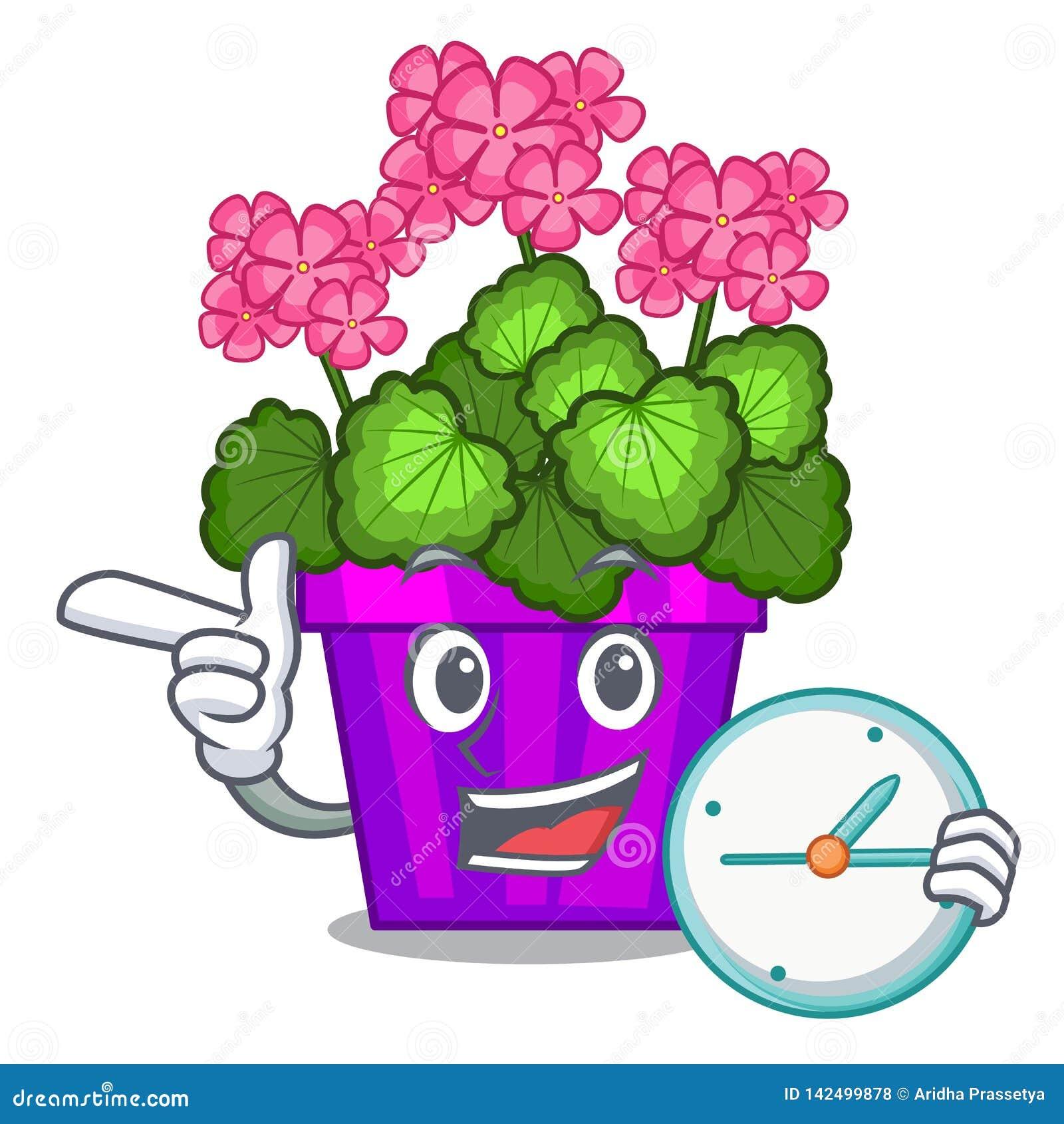Avec le géranium d horloge les fleurs collent la tige de caractère
