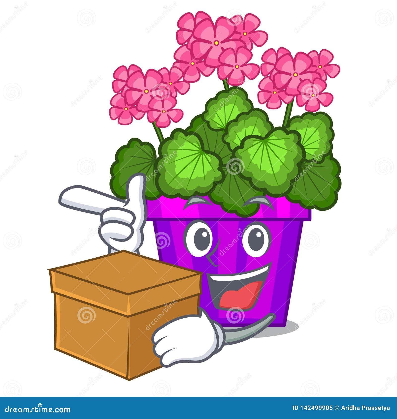 Avec le géranium de boîte les fleurs collent la tige de caractère
