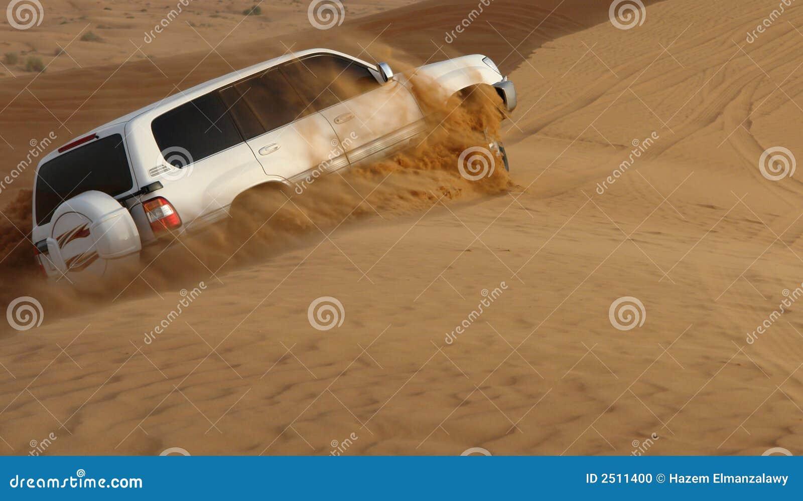 Aventura del safari del desierto