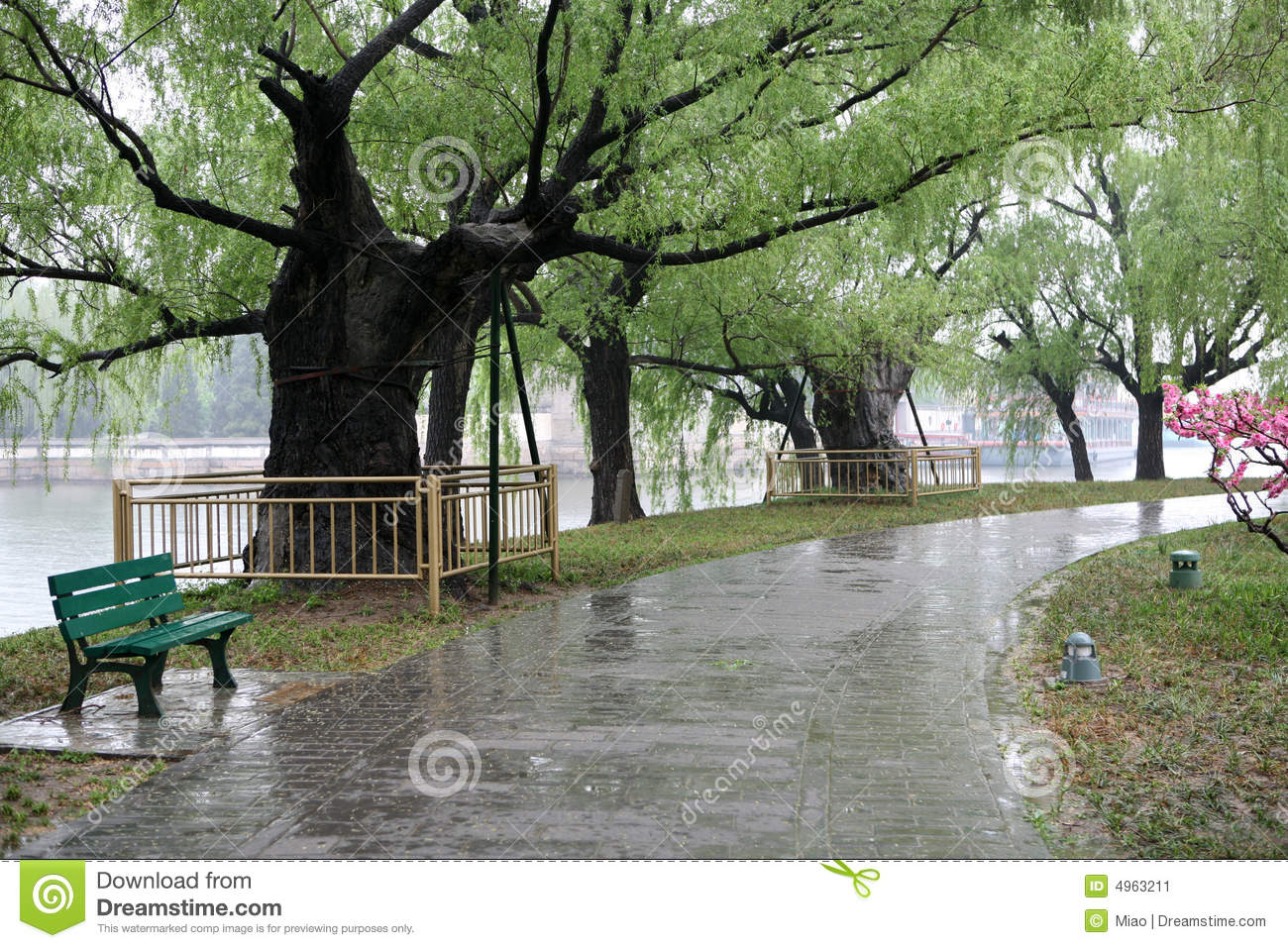 Avenue After Spring Rain Stock Image - Image: 4963211