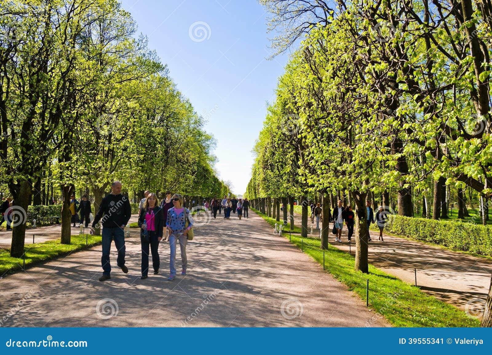 Aveny i Peterhof, St Petersburg, Ryssland