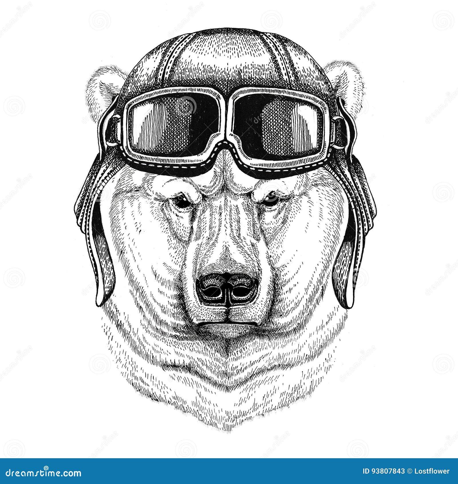 Aviador De Couro Vestindo Do Capacete Do Urso Polar Motociclista