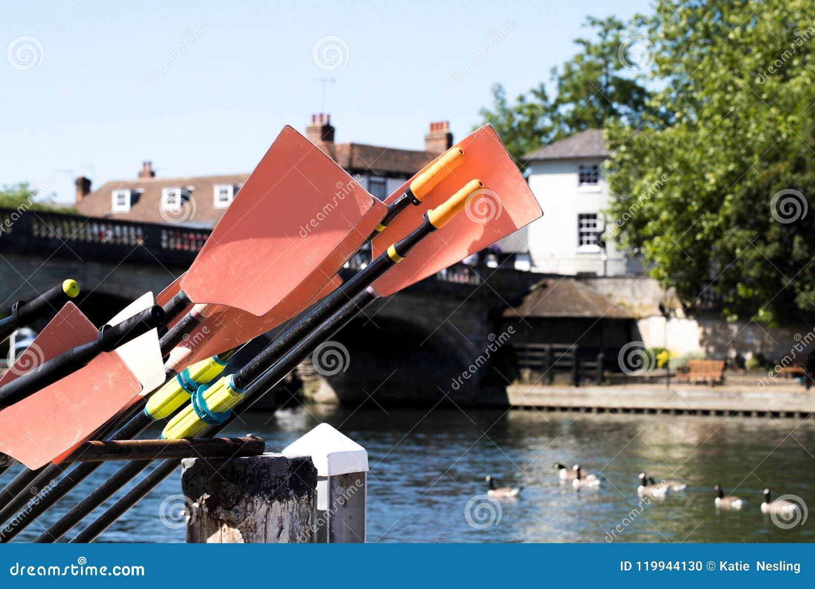 Avirons empilés à côté de la Tamise chez Henley On Thames In Oxfords