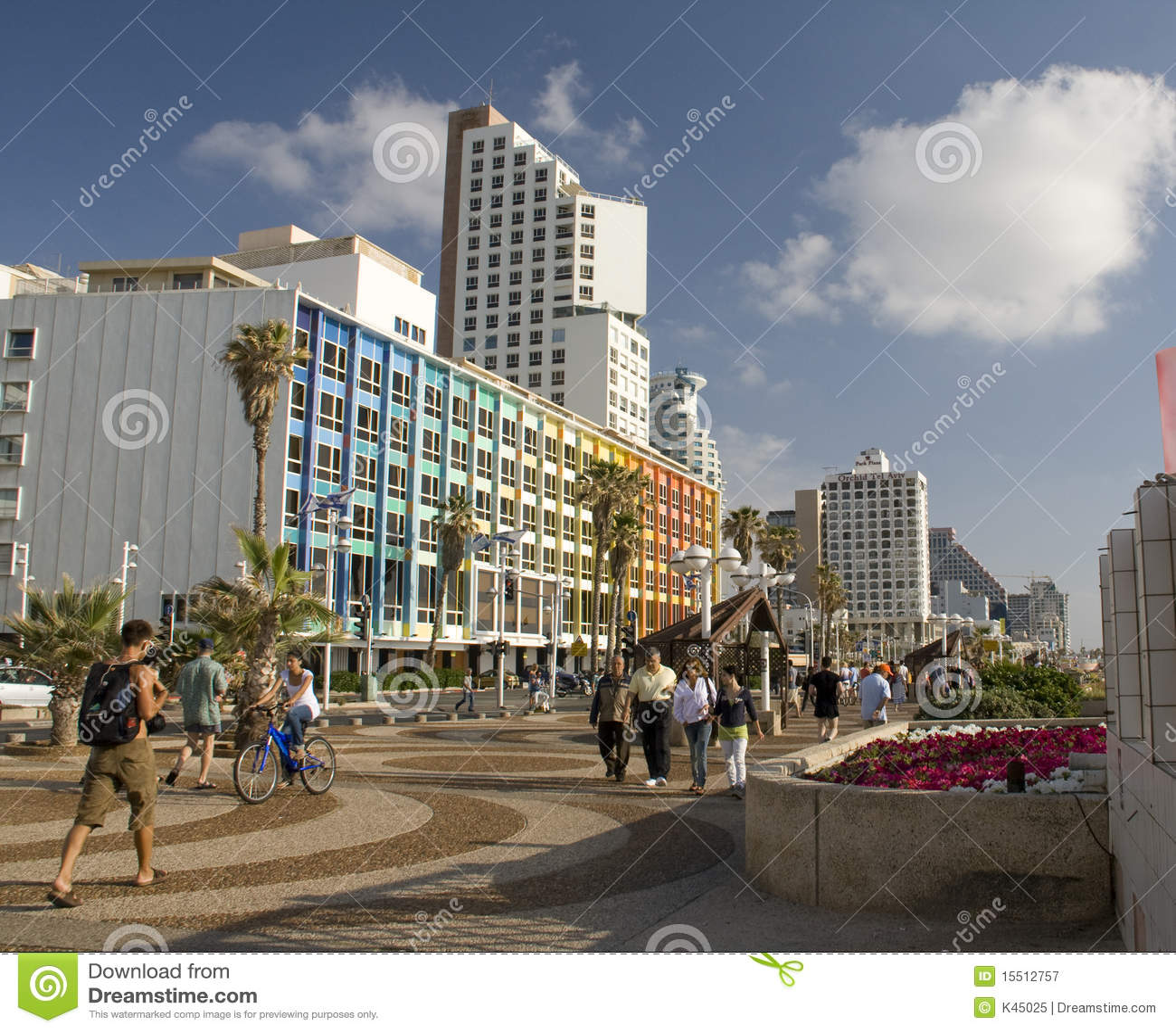 Aviv海滨tel