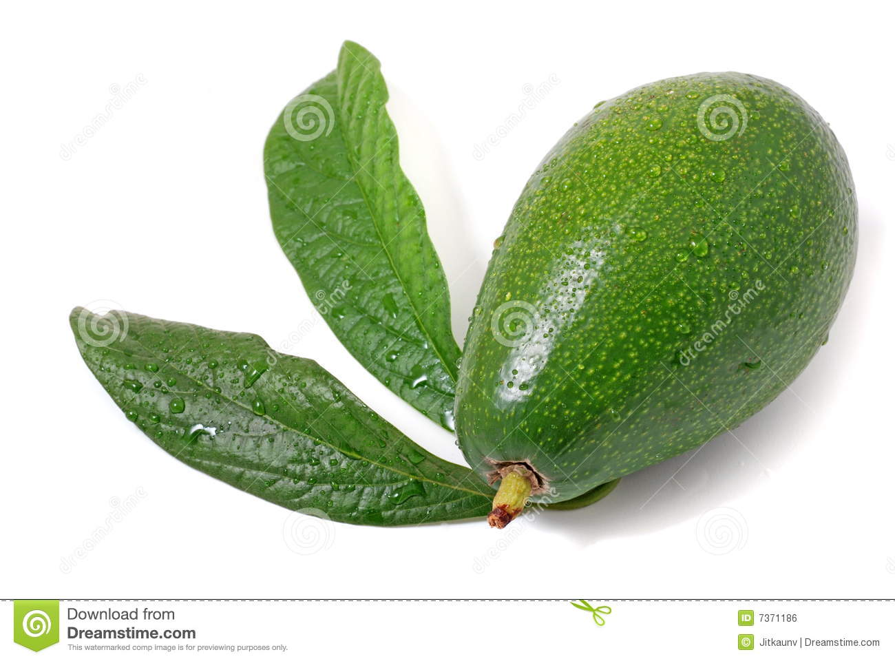 is an avocado a fruit or vegetable is sugar from fruit healthy