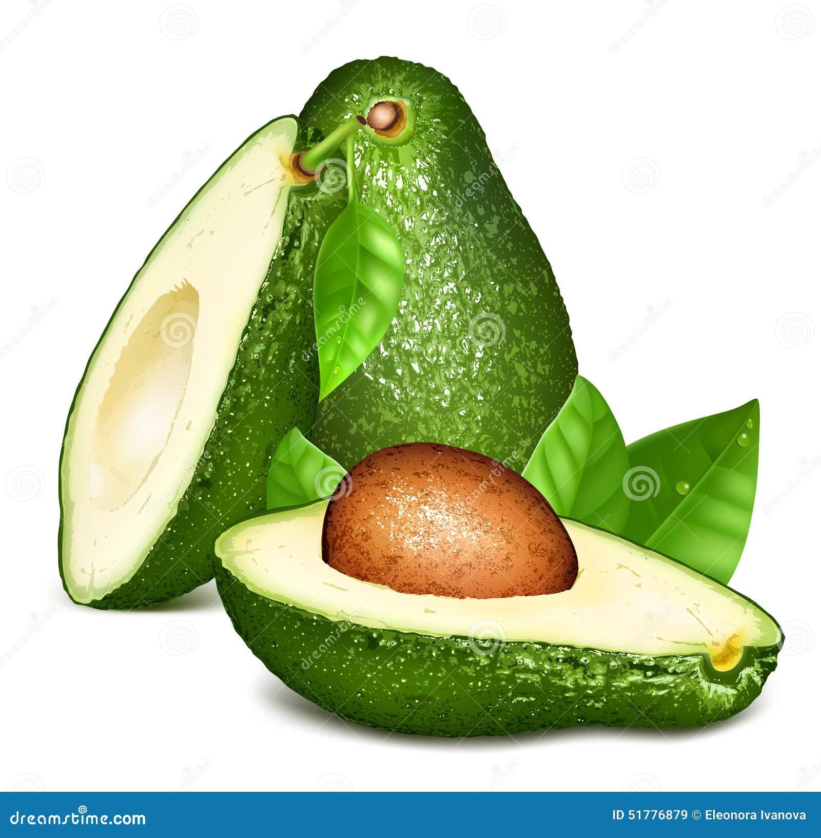 Avocado s met bladeren