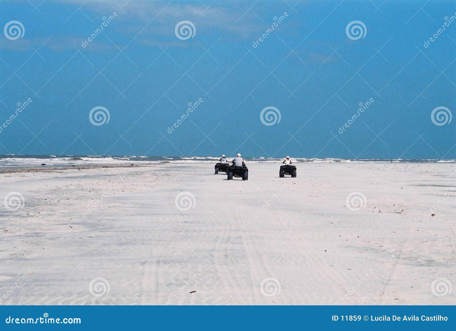 Avontuur bij het verlaten strand