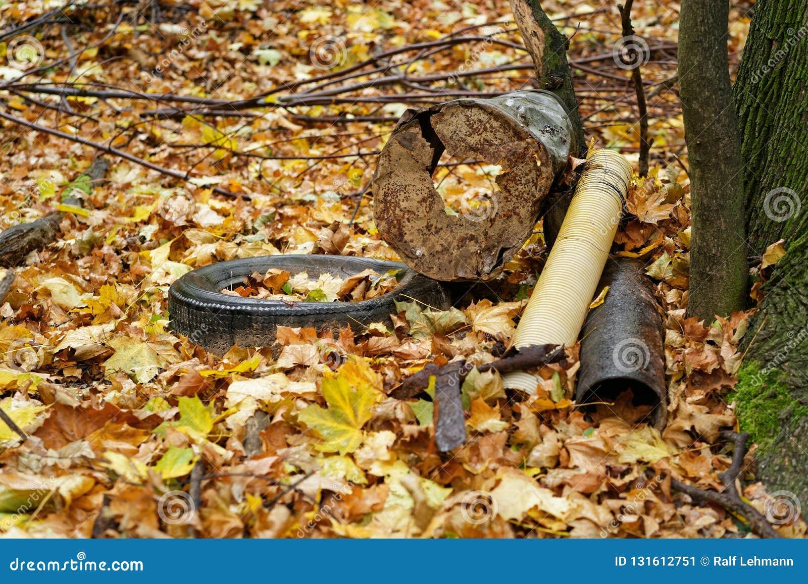 Avskrädeinsättningen i skogen på ett träd, bilgummihjul, metallskrot, delar, höstsidor täcker jordningen