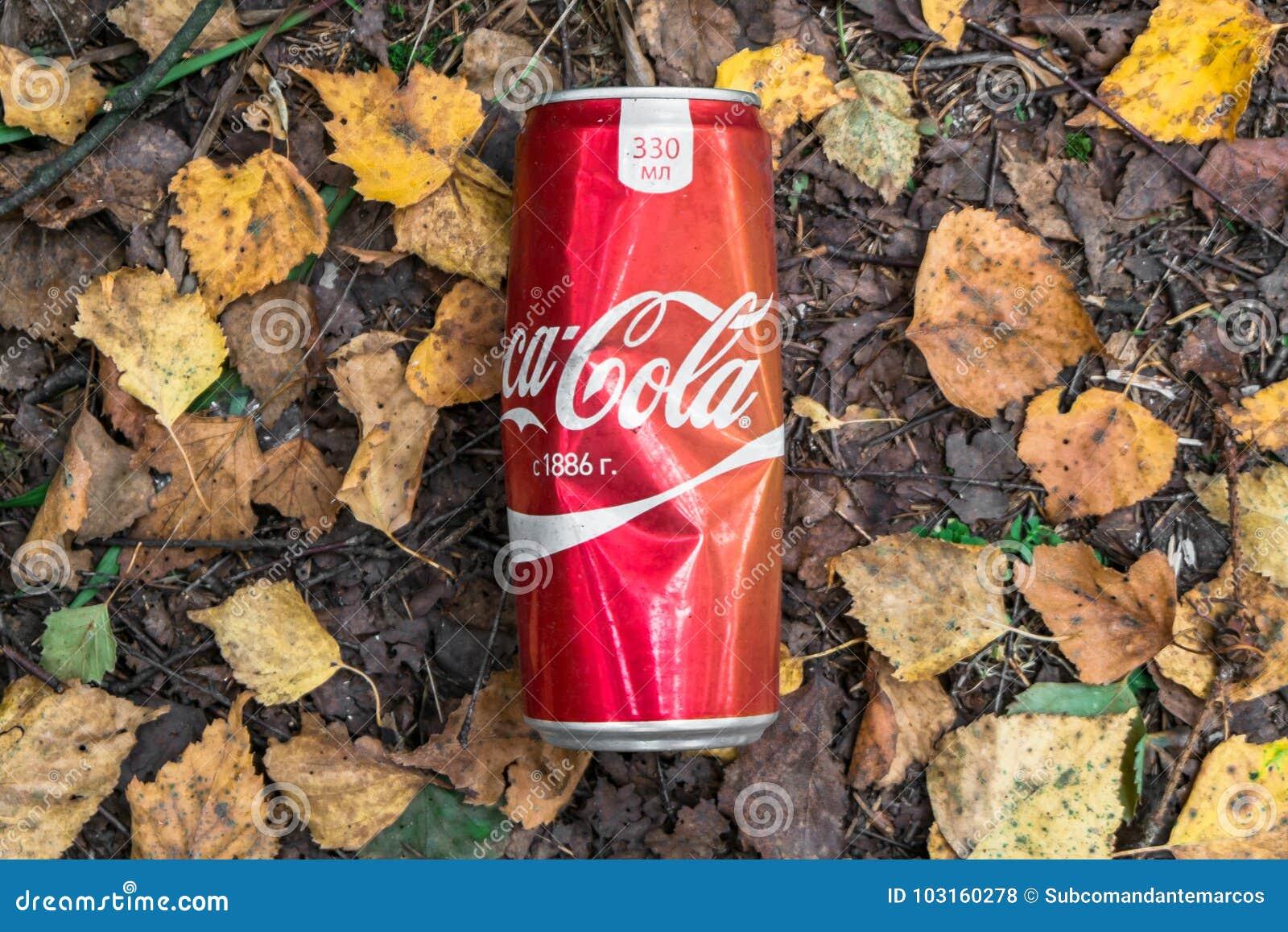 Avskrädet som lämnas efter en picknick i skogen, Moskvaförorter, Ryssland