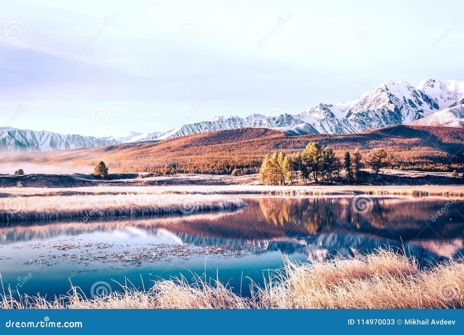 Avspegla yttersida av sjön i bergdalen
