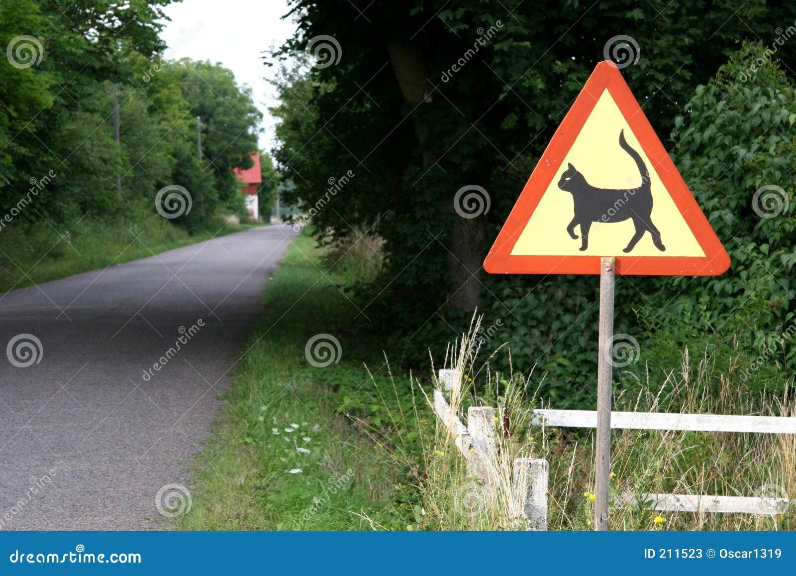 Avvertimento del gatto