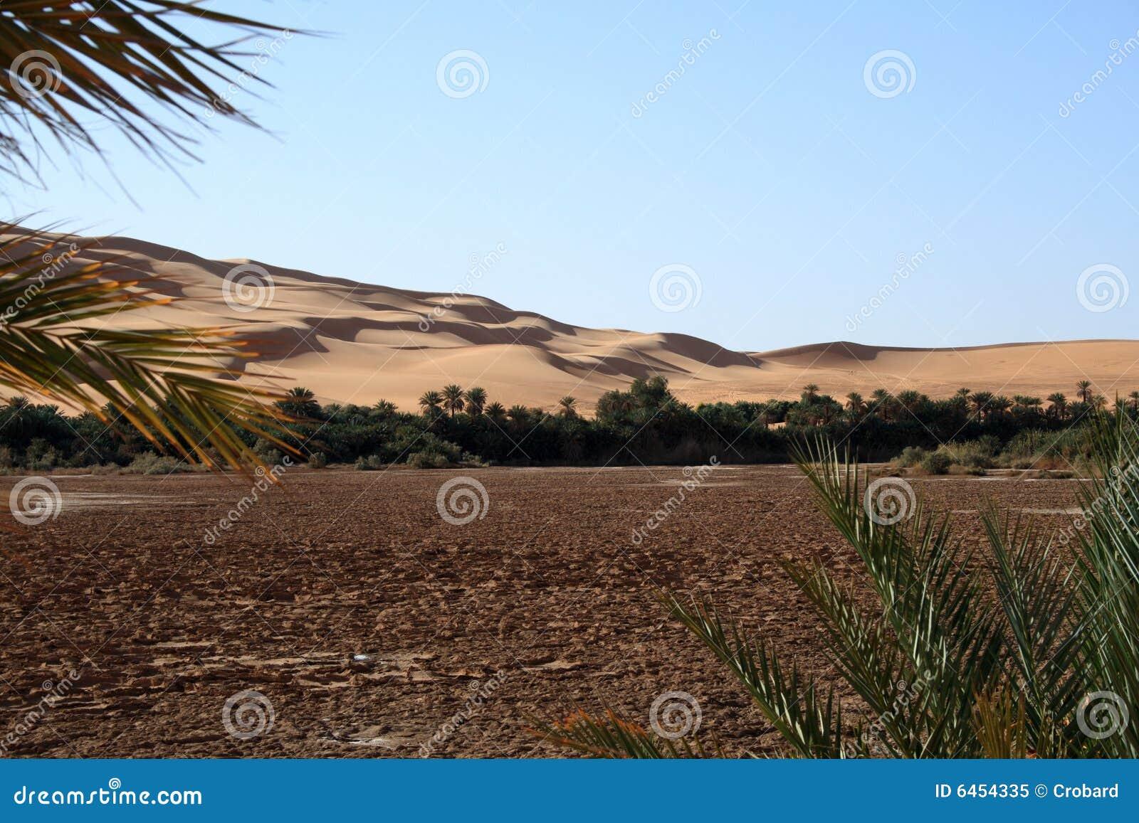 Awbari oaza