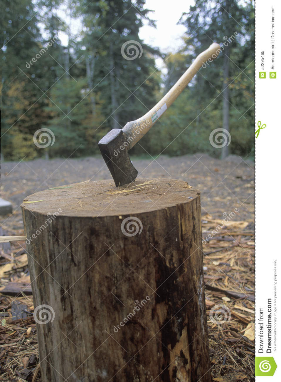An axe being thrust into a large log in Copper Harbor, Michigan