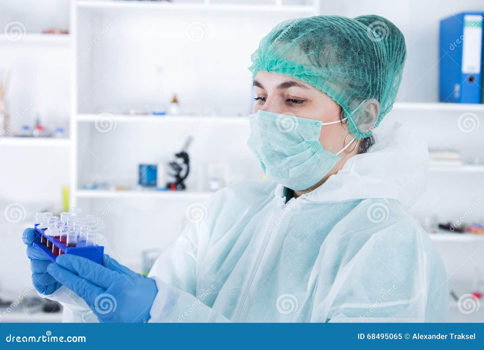 Ayudante de laboratorio en el laboratorio del valor nutritivo El análisis del cultivo celular a probar genético modificó la semil