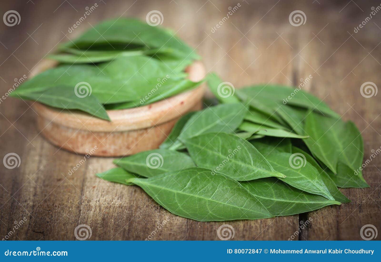 Ayurvedic henna leaves