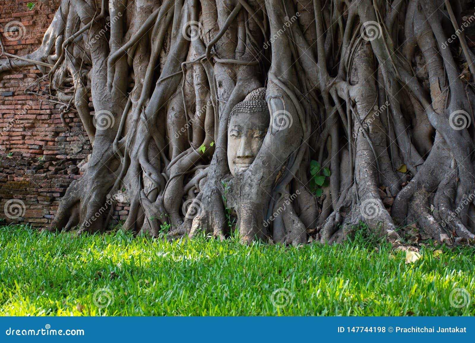 Ayutthaya, древний город Thailan