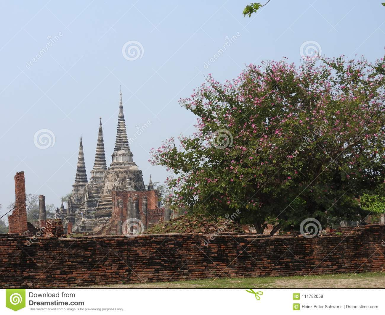 Ayutthaya capital of the Kingdom of Siam