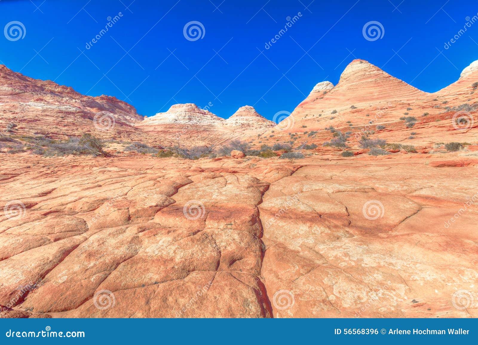 Download AZ-ν Coyotte το λόφος-κύμα στοκ εικόνες. εικόνα από ουρανοί - 56568396
