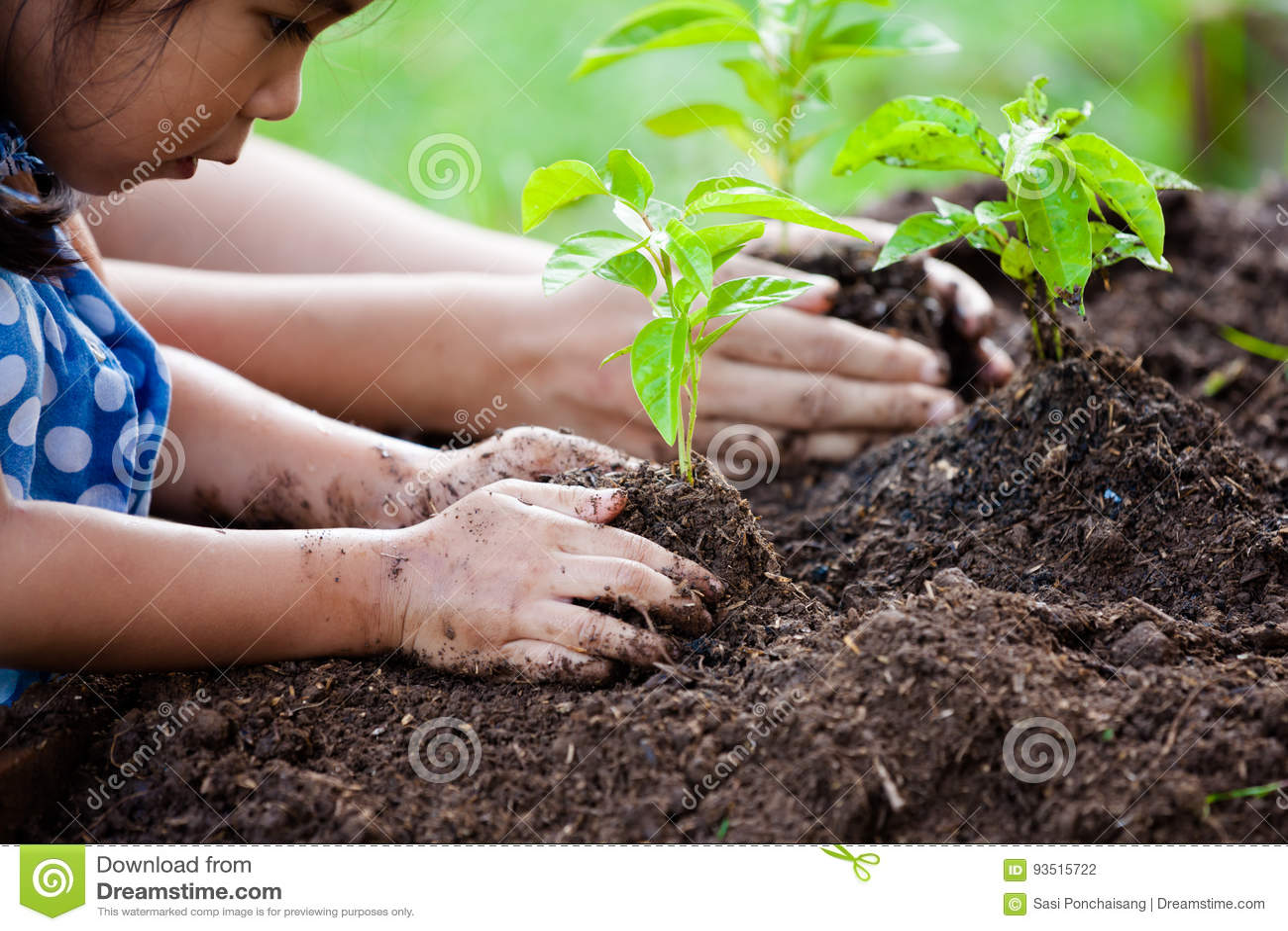 Aziatische meisje en ouder die jonge boom op zwarte grond planten
