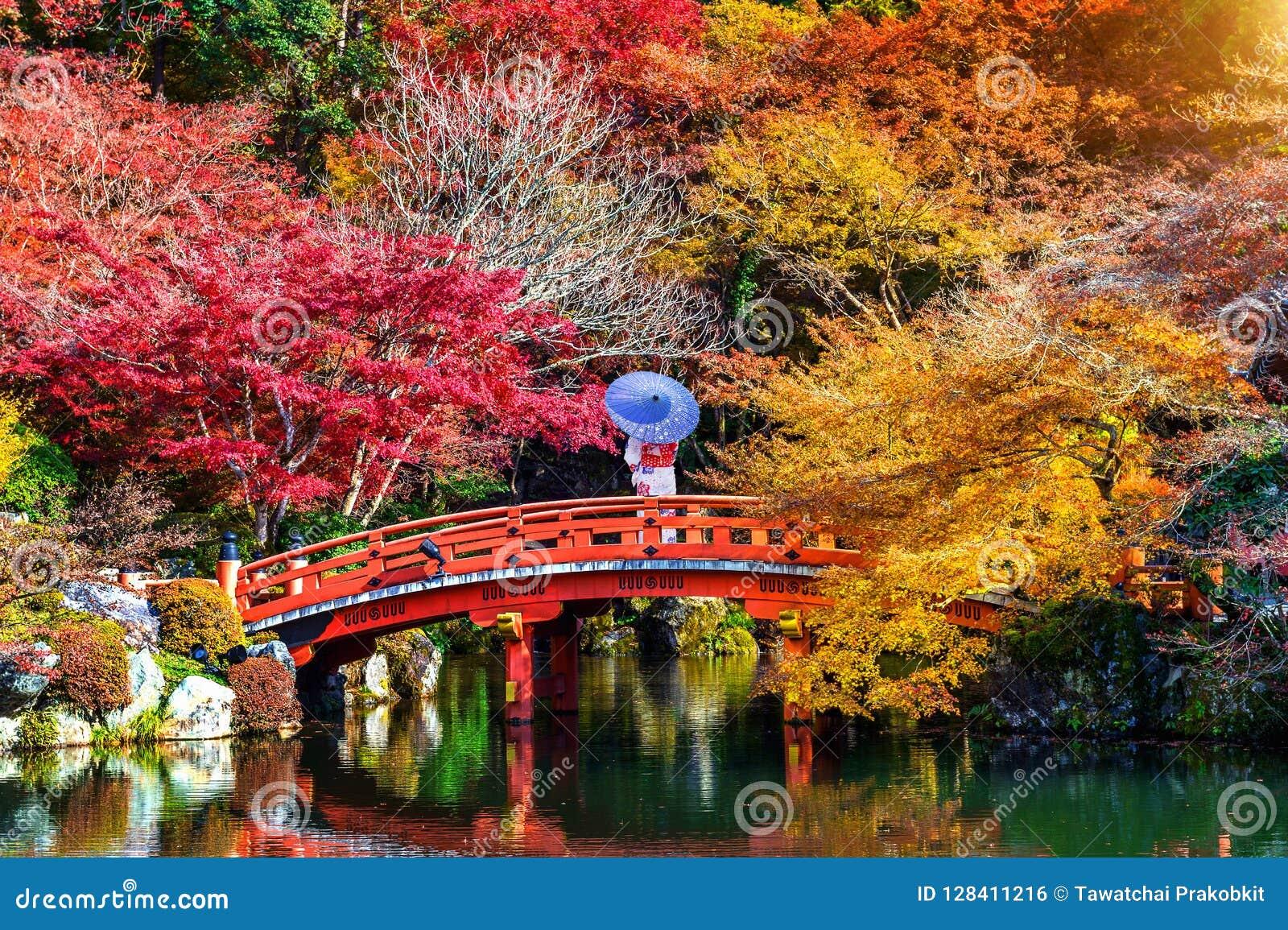 Aziatische vrouw die Japanse traditionele kimono in de herfstpark dragen japan