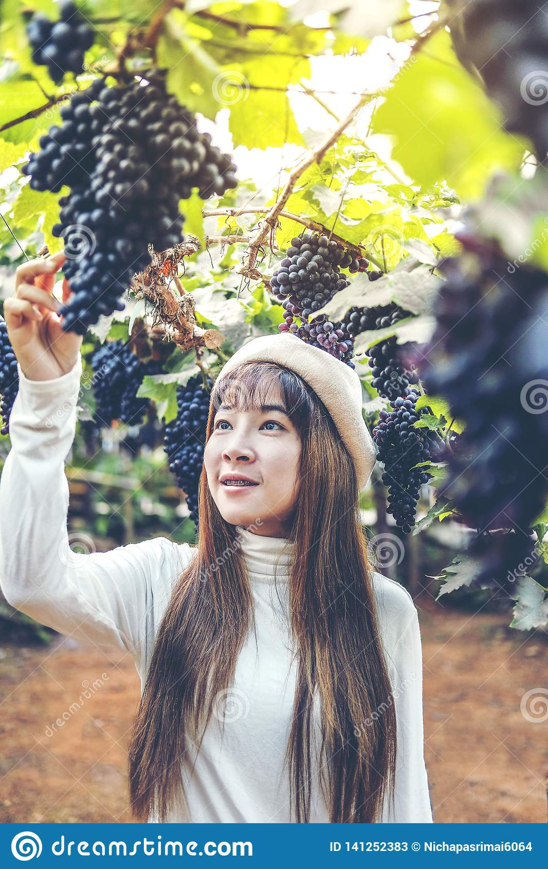 Aziatische Vrouw die winemaker druiven in wijngaard controleren