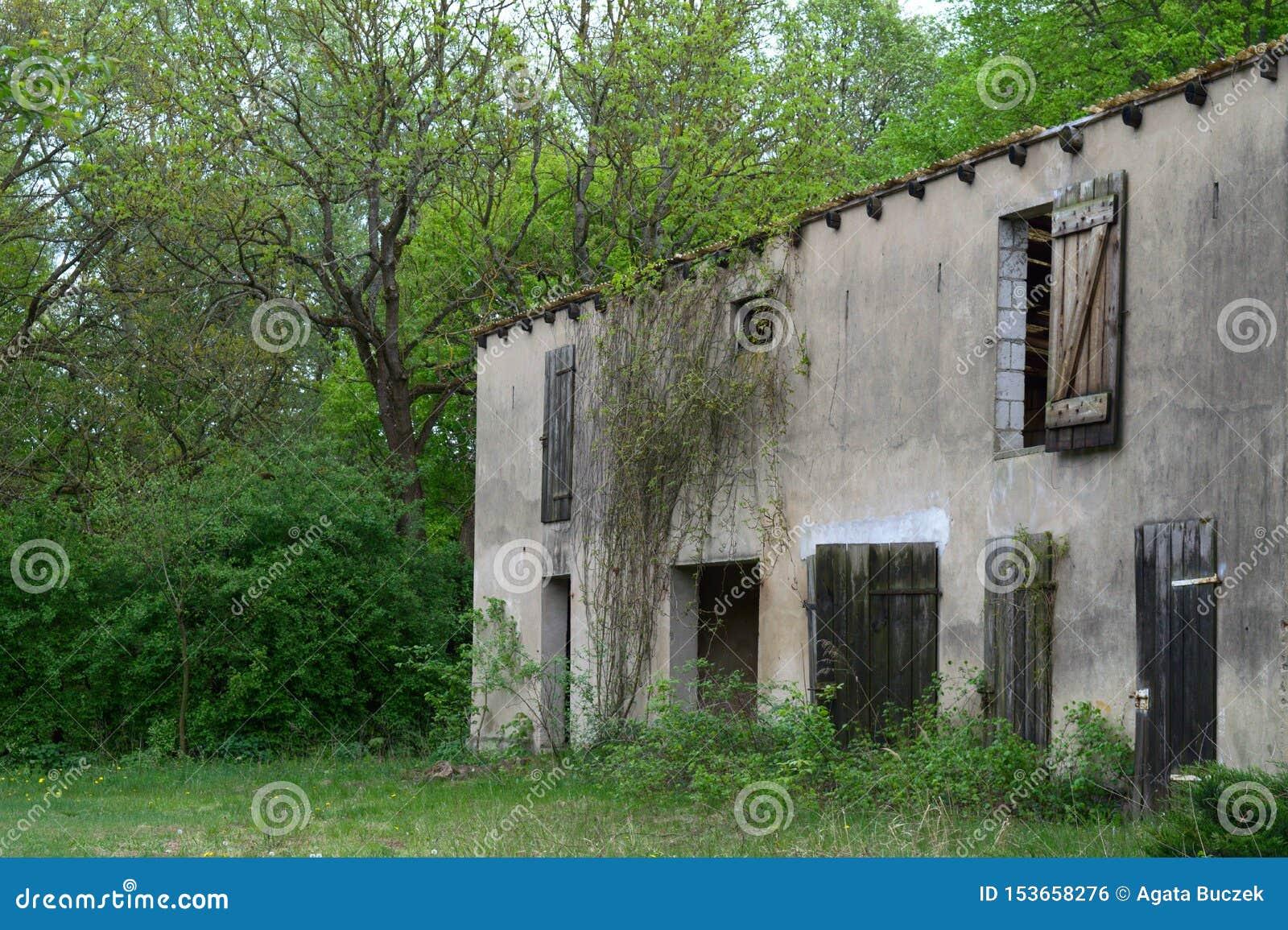 Azienda agricola abbandonata nella foresta