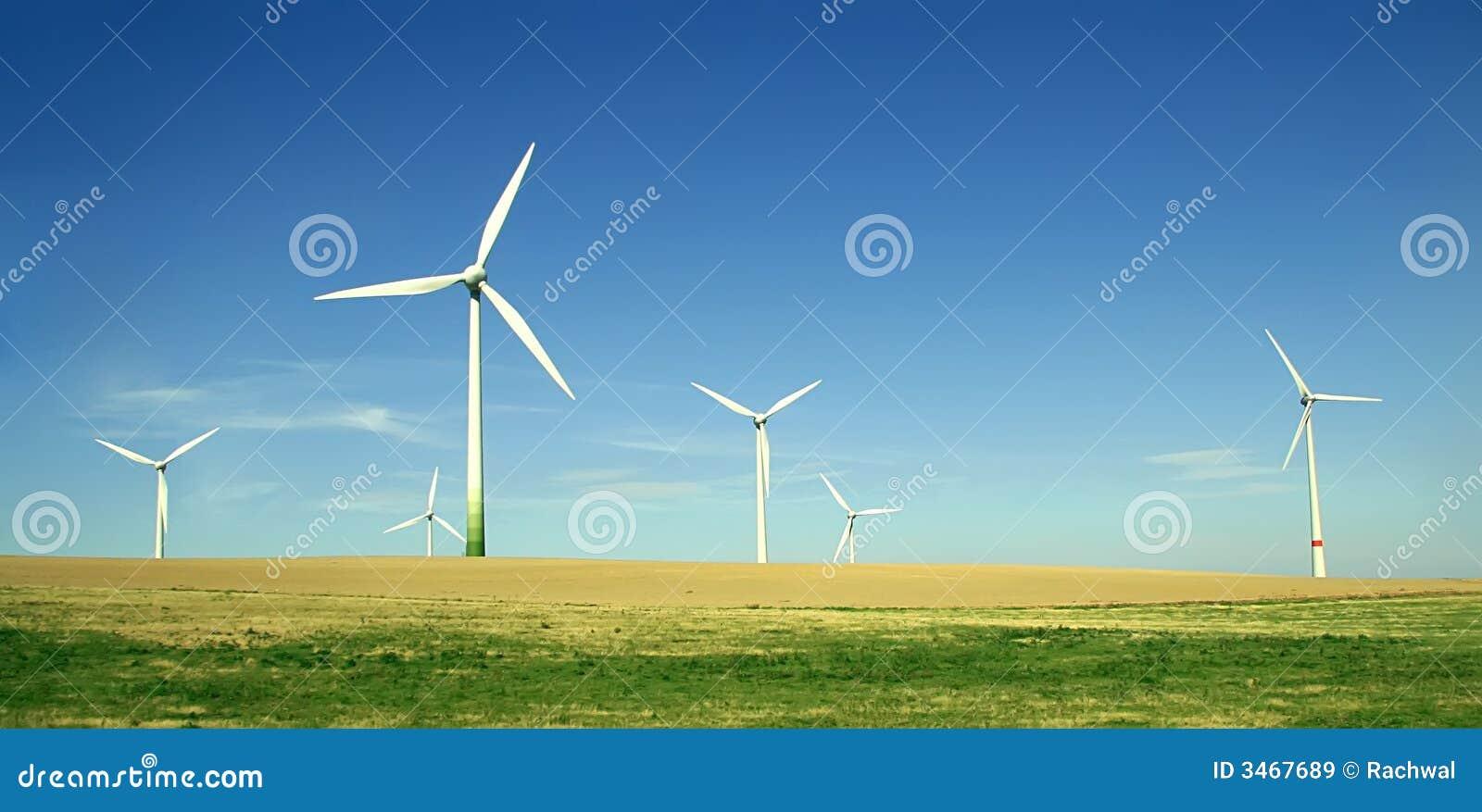 Azienda agricola delle turbine di vento